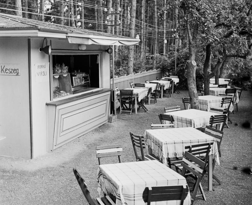 1965 Balatonvilágos, Étterem, keszeg kapható, fotó © Bauer Sándor